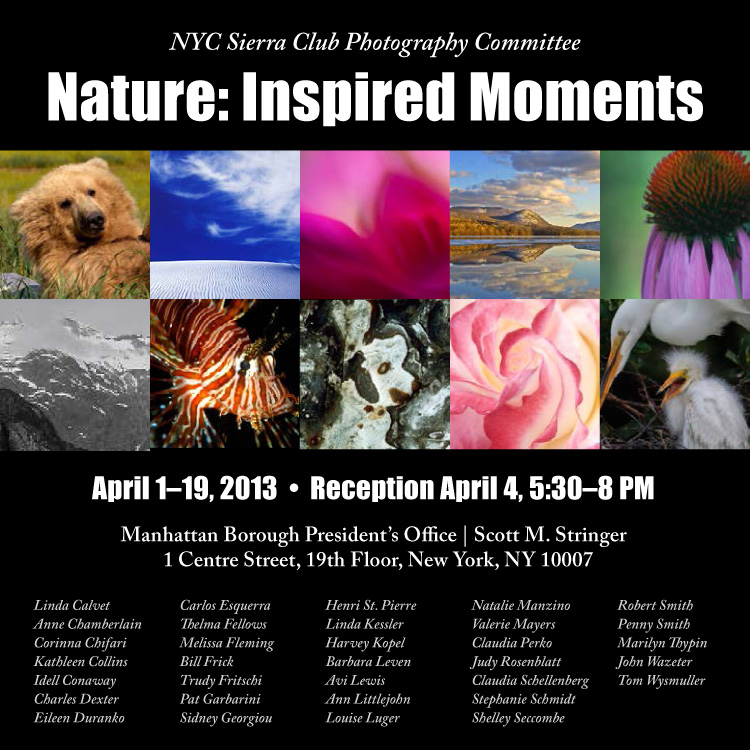 Invitation to Nature: Inspired Moments jpg