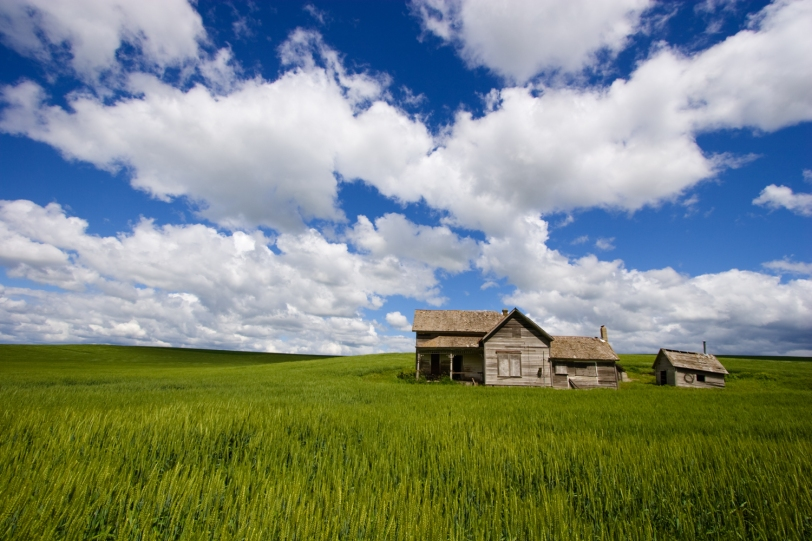 Abandoned Farmhouse  © Tim Grey