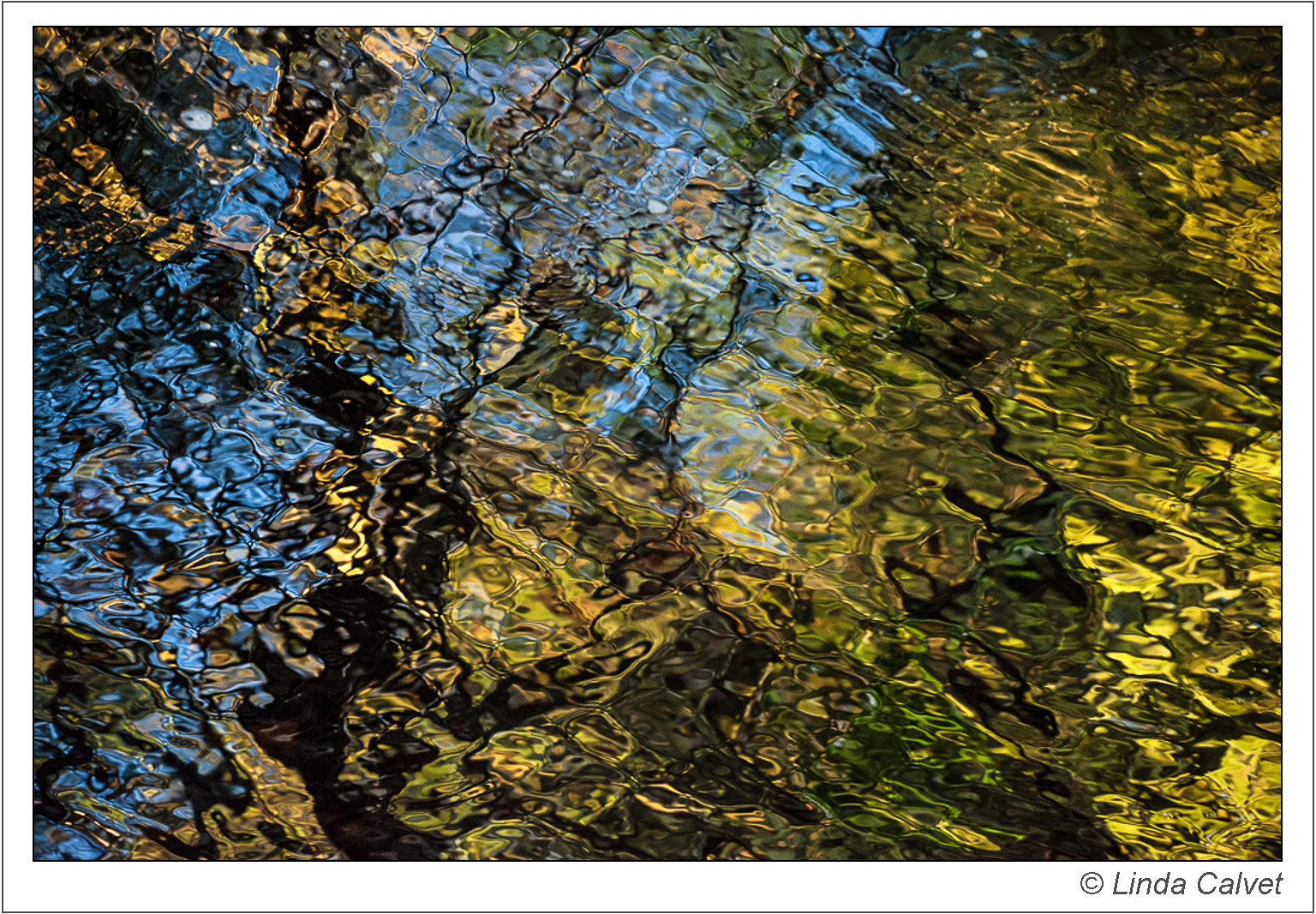 Reflections in Bushkill Creek