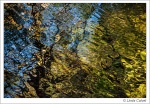 Reflections in Bushkill Creek