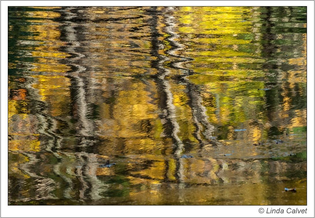 Autumn reflections rippling in Lake Nawahunta
