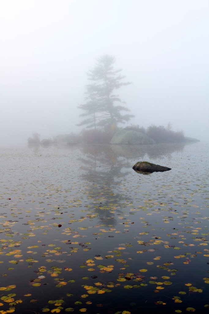 Foggy Pond, Stillness © Larry Zink