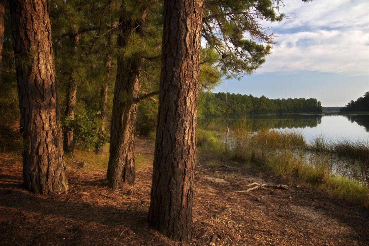 Harrisville Pond © Larry Zink