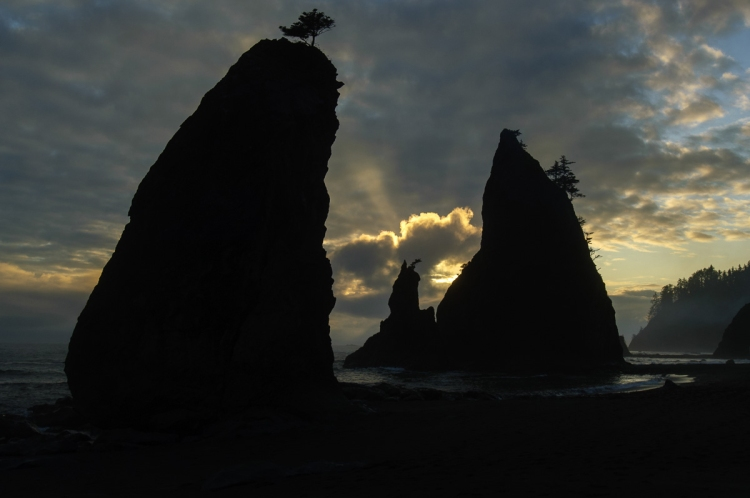 Evening descends on the shores of Olympic National Park. © 2011 Chris Nicholson, www.PhotographingNationalParks.com