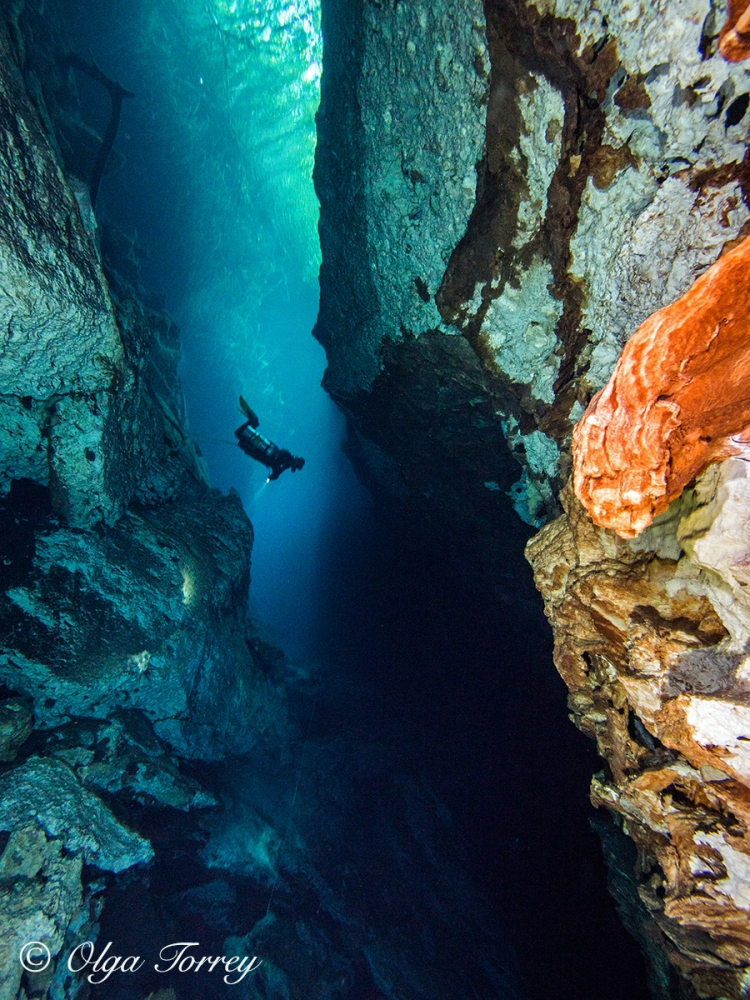 © Olga Torrey, color underwater photograph