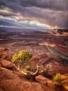 Color photograph of landscape, Moab, Utah © Clifford Pickett