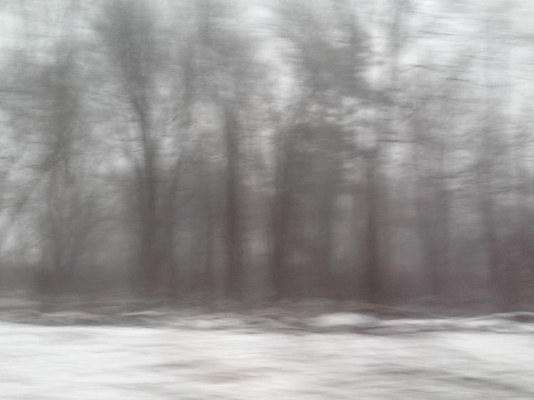 Roadside, Massachusetts, Winter © Anne Chamberlain