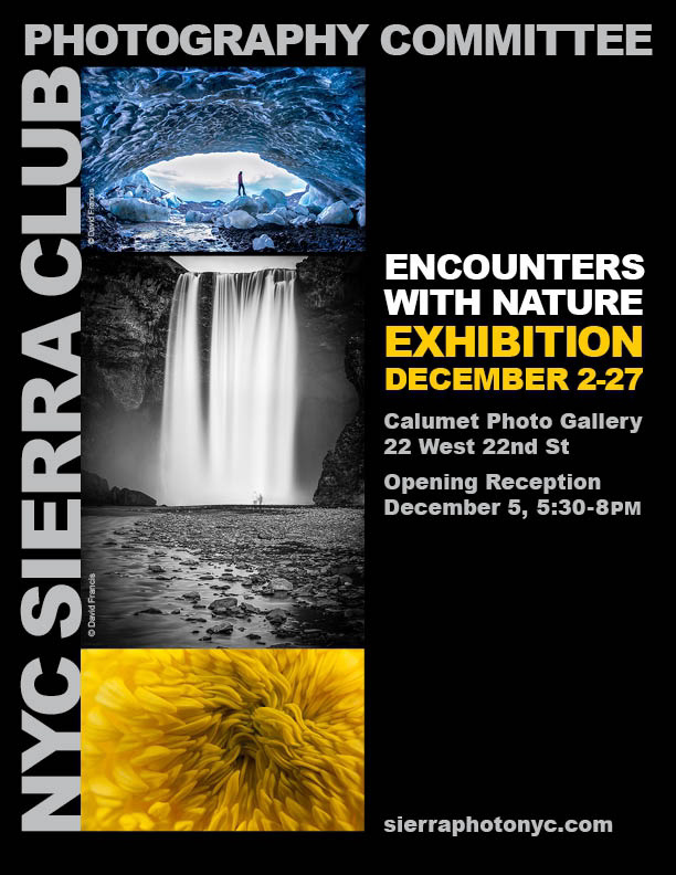 Encounters with Nature at the Calumet Photo Gallery in NYC (2013)