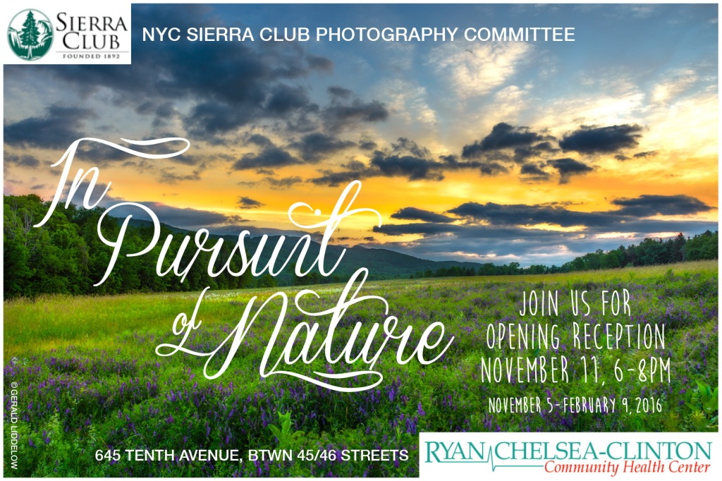 The Pursuit of Nature and Urban Nature, both at the Ryan Chelsea-Clinton Community Health Center in NYC (2016)