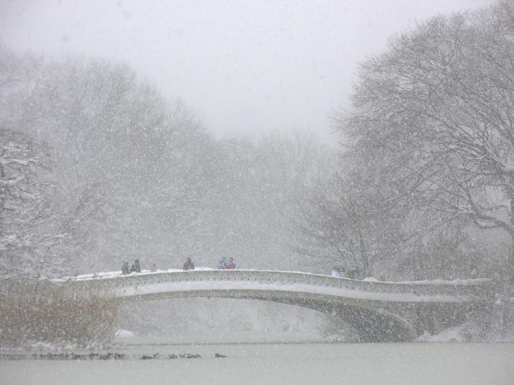 © Linda Calvet, Bow Bridge, Blizzard of '06, Central Park, NYC