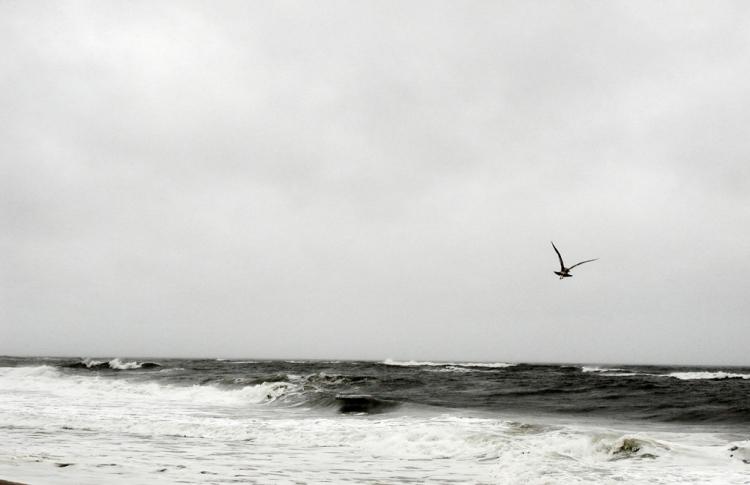 © Kathleen Collins, Atlantic, Fire Island, NY