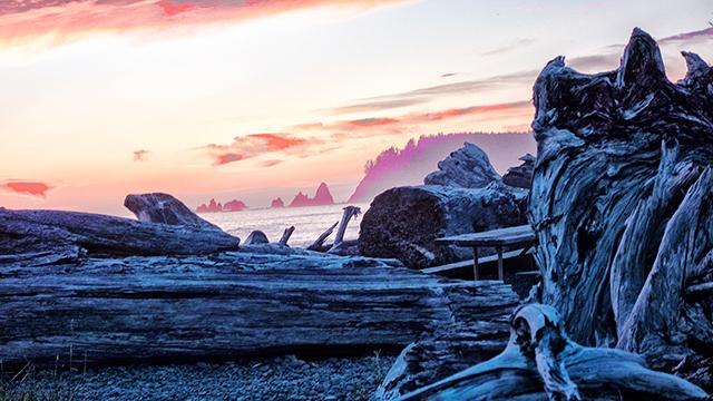 © Ruth Formanek, Rialto, Olympic National Park, WA