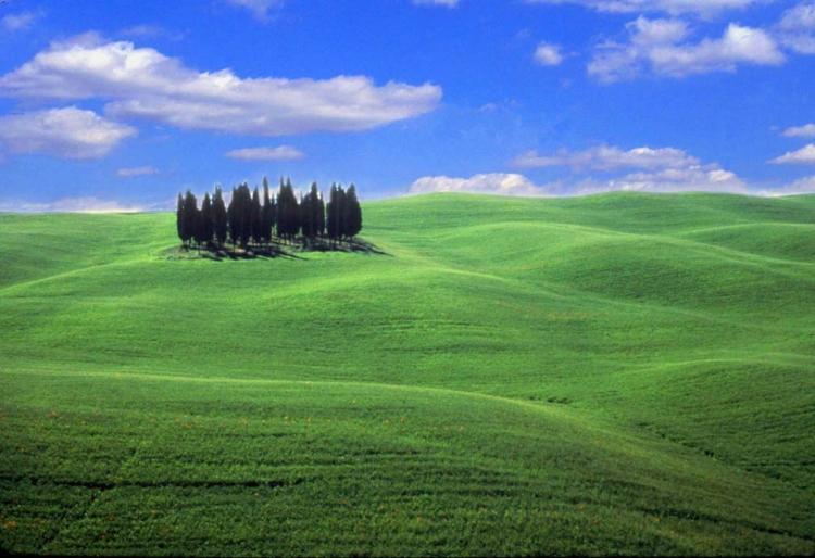 © Archie Reyes, Toscana, Tuscany, Italy